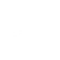 OPPORTUNITY INTERNATIONAL MOZAMBIQUE